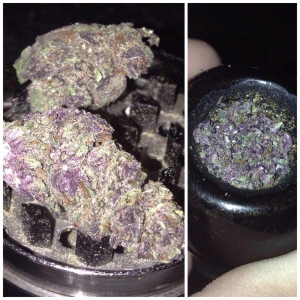 Buy Purple Mayhem Strain