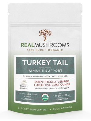 Turkey Tail Extract Mushroom