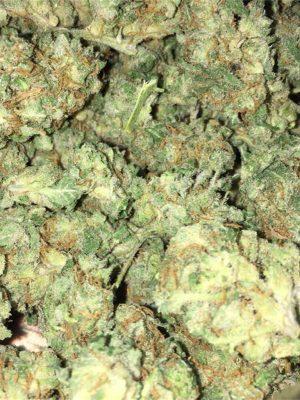 Buy Bubba OG Weed Strain