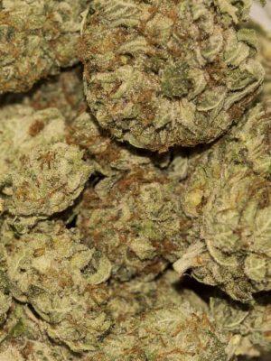 Buy SFV OG Marijuana UK