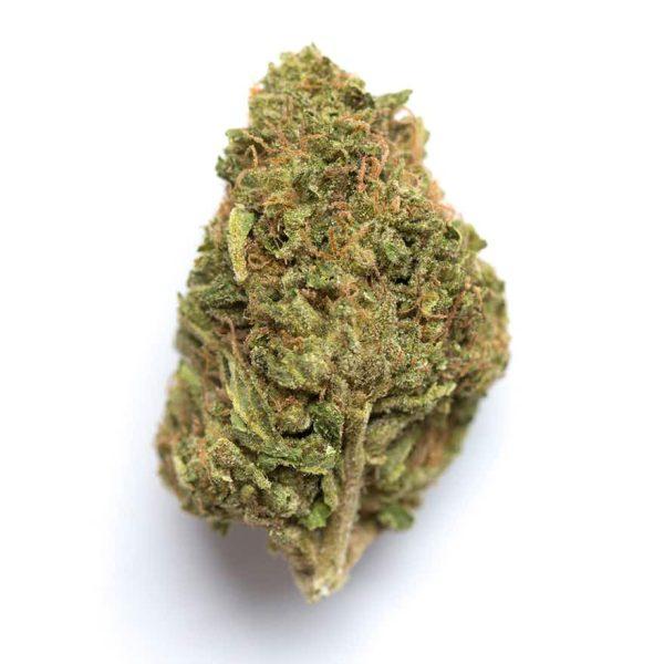 Lemon Tree Marijuana Strain