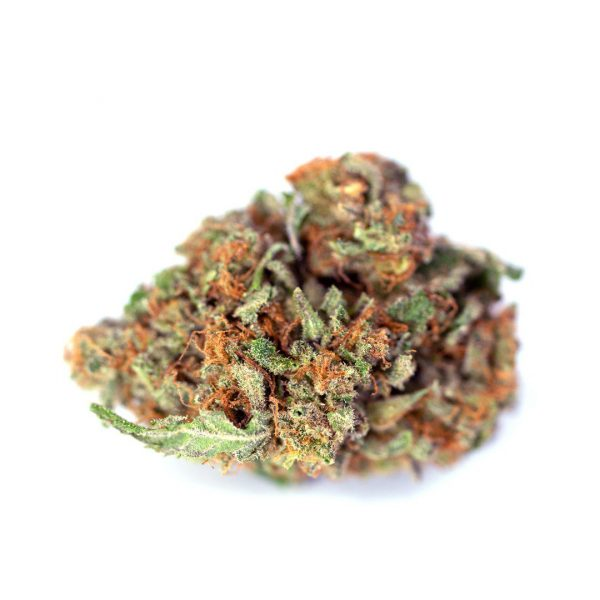 Tangie Marijuana Strain UK