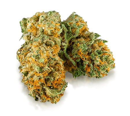 Harlequin Weed Strain Online