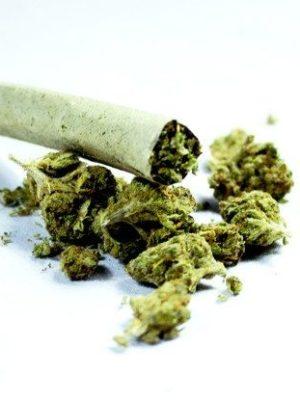 Marijuana Pre-Rolled Joints UK